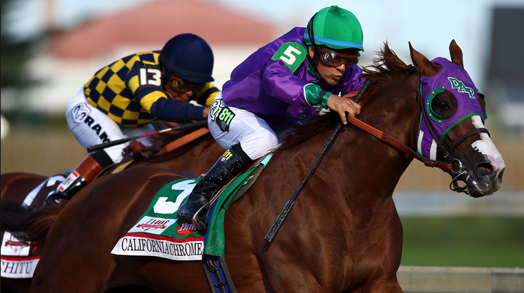 In 2014 California Chrome joined Street Sense (2007) as only the second Kentucky Derby winner to enter the race with over $1 Million in earnings (Andy Lyons/Getty Images)